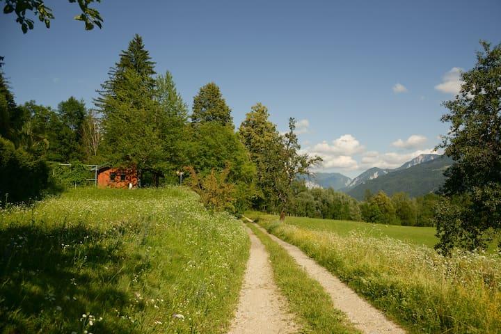 Ferienhaus in der Natur/ WoodenHut  - Wellersdorf - Hut