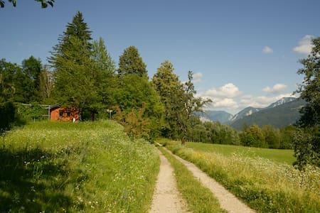 Ferienhaus in der Natur/ WoodenHut  - Wellersdorf - 小屋
