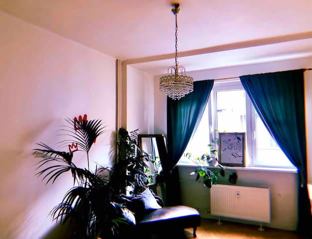 Jungle room in the heart of Pardubice