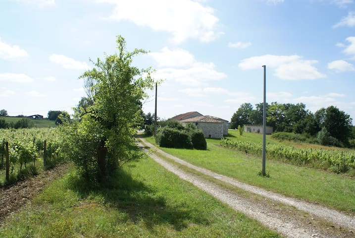 House with pool and vineyard - Montaigu-de-Quercy - Huis