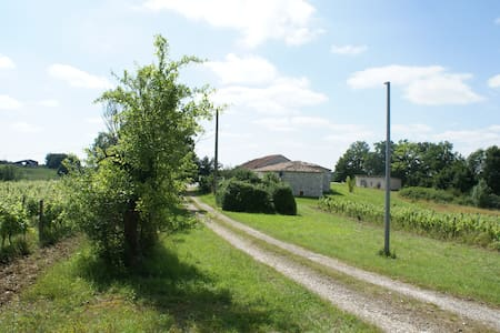 House with pool and vineyard - Montaigu-de-Quercy