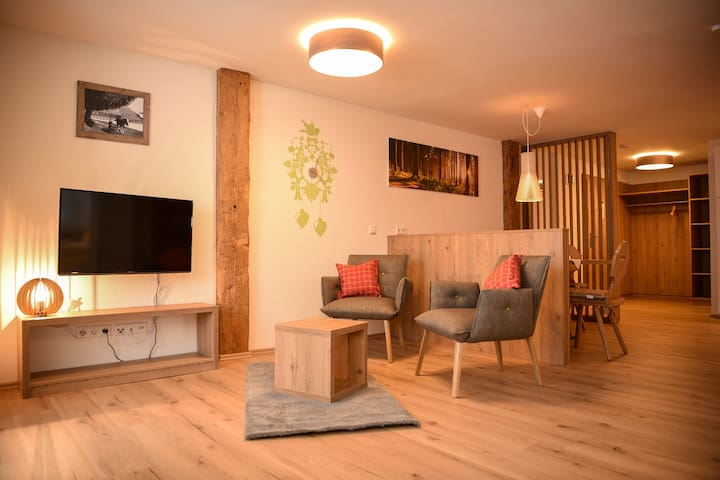Black Forest Titisee Apartment