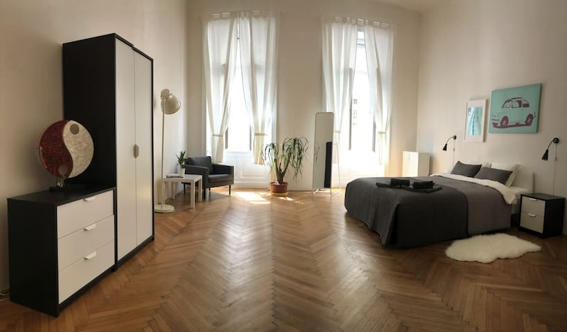 Big bright and private room near Dancing House