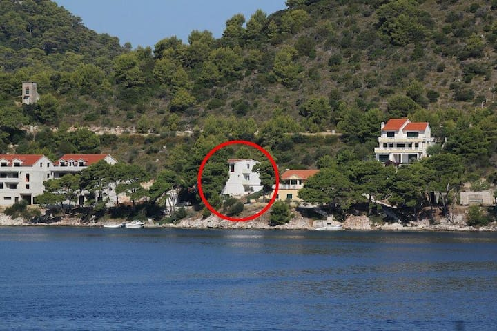 Two bedroom apartment near beach Pasadur, Lastovo (A-8388-a) - Pasadur - Apartamento
