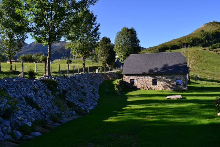 Typique grange pyrénéenne rénovée en charmant gîte