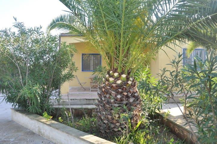 Ferienhaus für 6 Gäste mit 110m² in Manduria (128087)