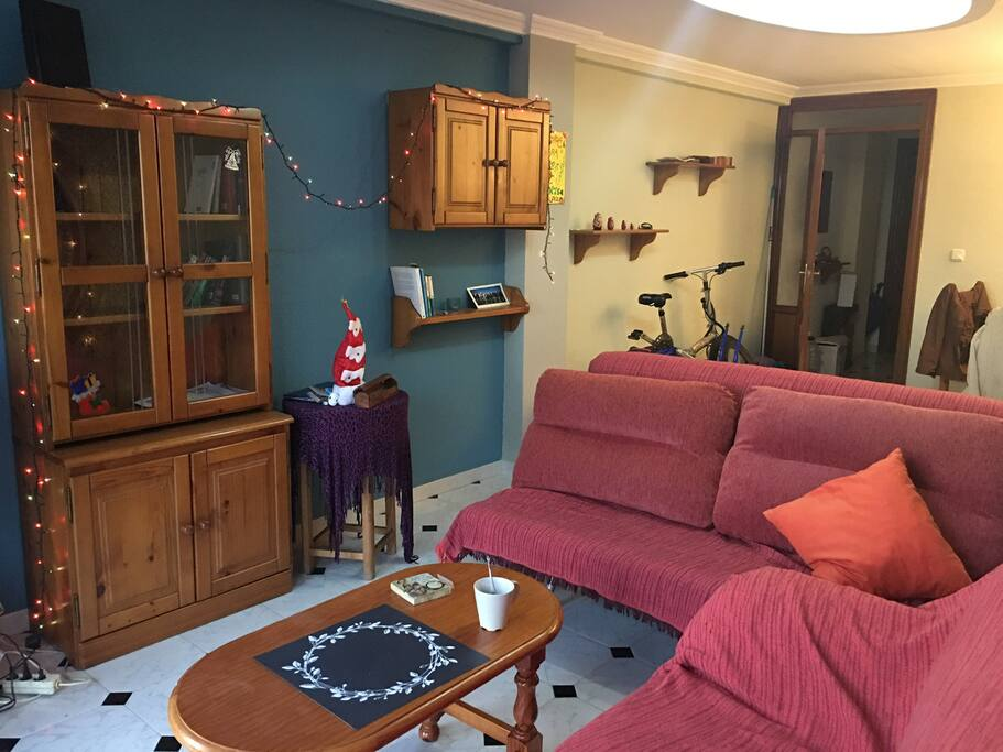 Wide luminous shared living room