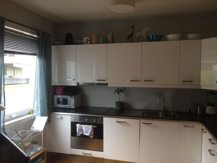 Kitchen with all modern facillities - dishwasher, microwave, tableware, oven ++