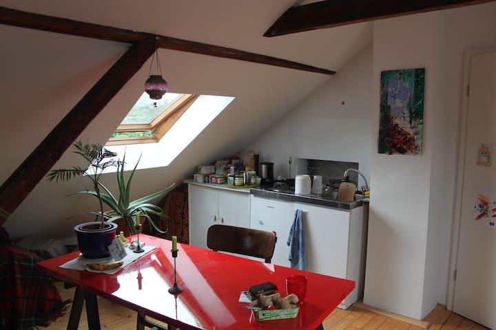 Schönes Dachappartment in ruhiger Lage - Köln - Dům