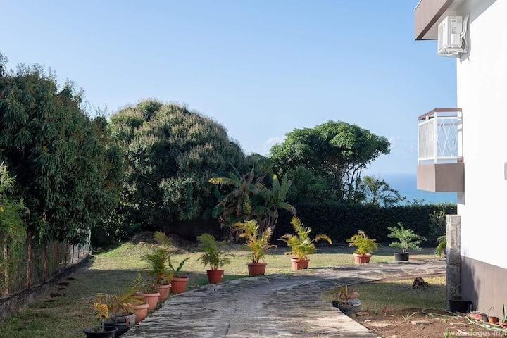 Chez Maevrina