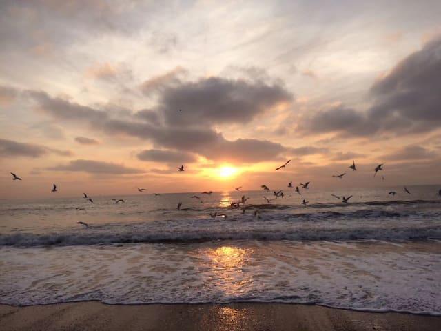冬天的海上日出