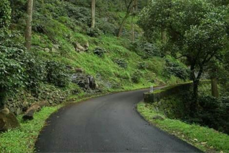 32 km long loop road turns lush as you wind up towards yercaud
