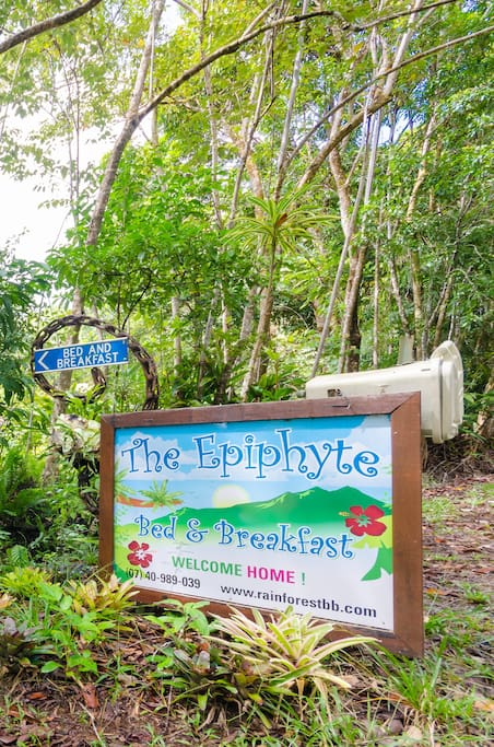 The Epiphyte B & B: sustainable accommodation house and cottages.