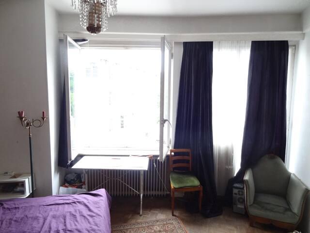 Chambre 18 m2 dans appartement en face du parc