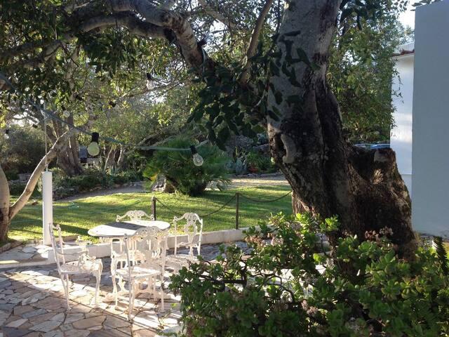 Amazing Villa 3 Rooms & Pool - Quinta do Alecrim