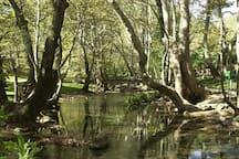 Πάρκο Αγίου Νικολάου - Νάουσα 19km/20 λεπτά