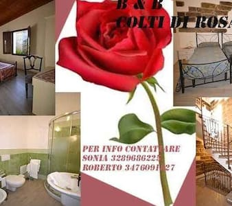 Bed and breakfast Colti di rosa - Castelsardo - Bed & Breakfast