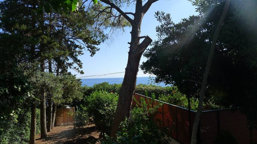 Villa with garden and private access to the beach! - Trabia - Byt