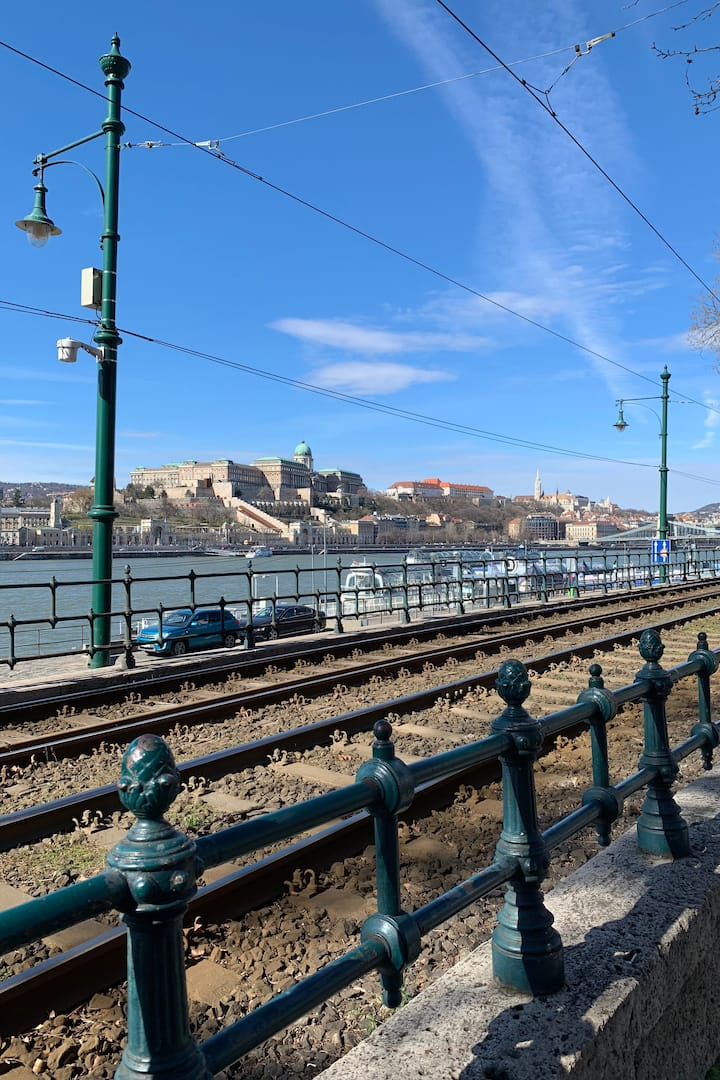 The Buda Castle from Pest side