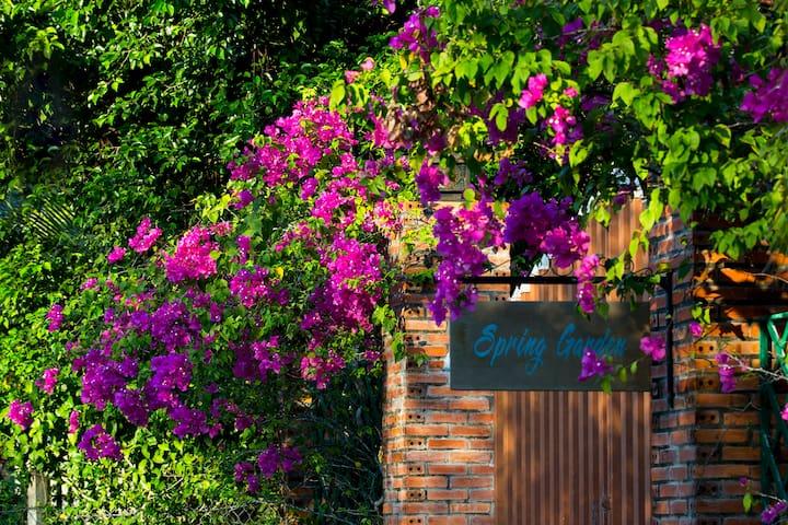 Spring Garden Homestay 5