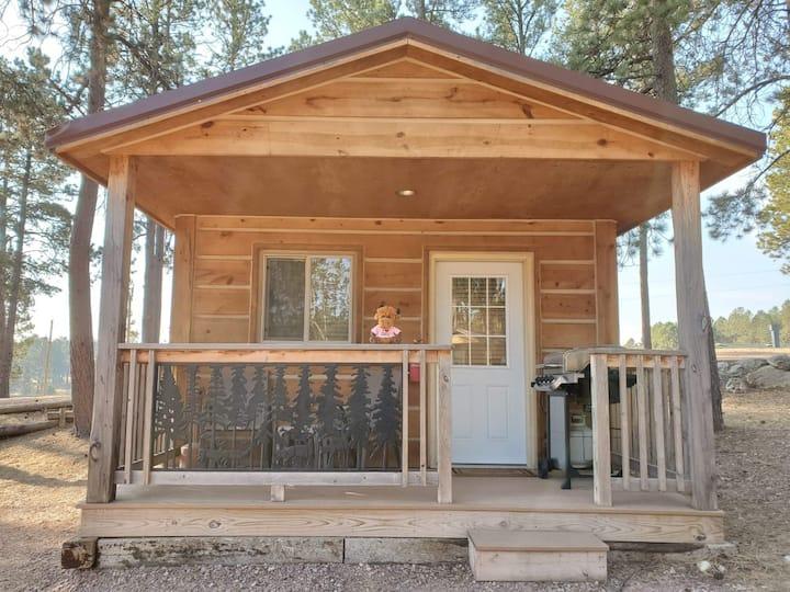 Cute Camping Cabin in Custer
