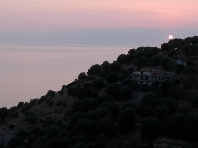 Pisciotta Residence