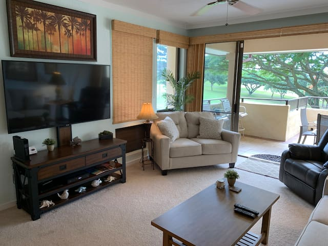 Living area with 65 inch smart tv.