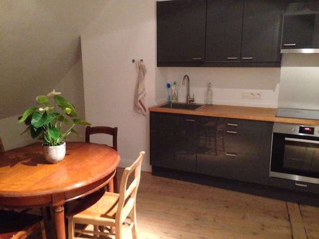 spacious and family friendly apartment in Antwerp - Anvers - Apartament