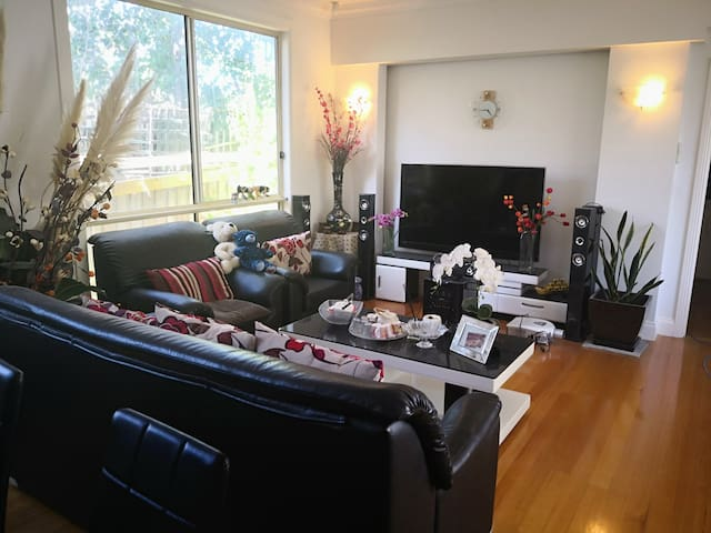 Modern & Cosy Bedrooms in Hawthorn East