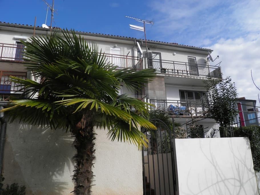 House Biba