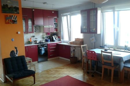 A nice, cheerful flat in Cracow - Kraków
