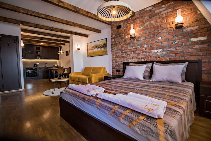 Apartment ANJA 1