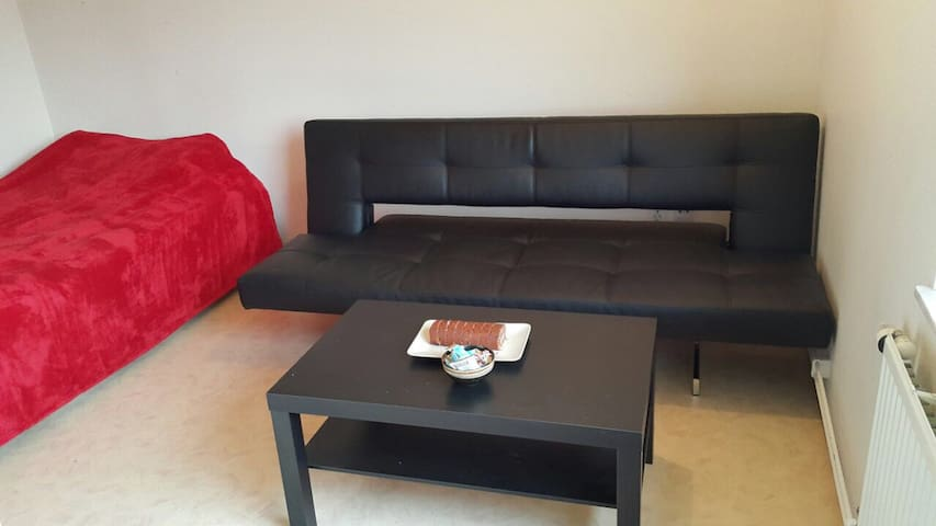 Cozy & lovely apartment close to C - Lund - Daire