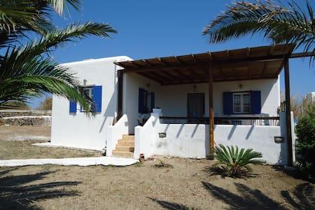 Ritsa's Traditional House