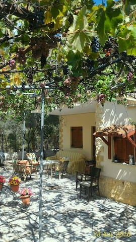 Beautiful house near the forest - pyrgadikia - Casa