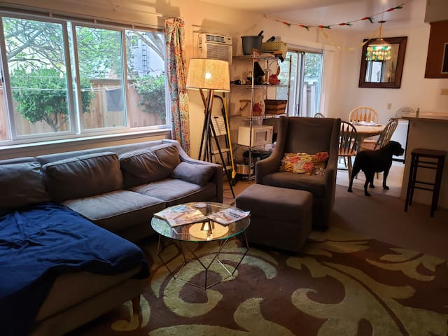 Large Sunny Town Home in the Heart of Davis!