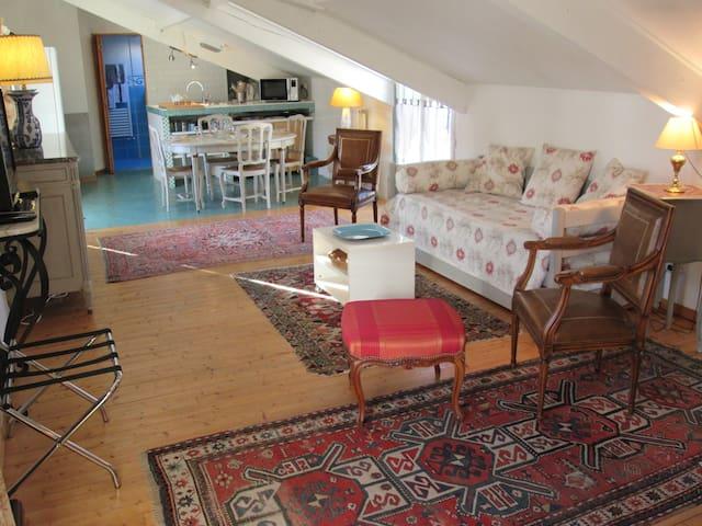 APPARTMENT 60M², 20 mn FROM PARIS - Maisons-Laffitte - Apartamento