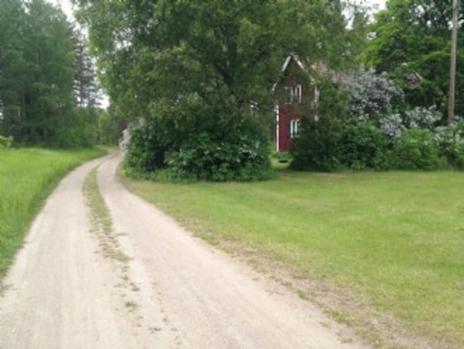 The small road leading to the beach and the house in the background.