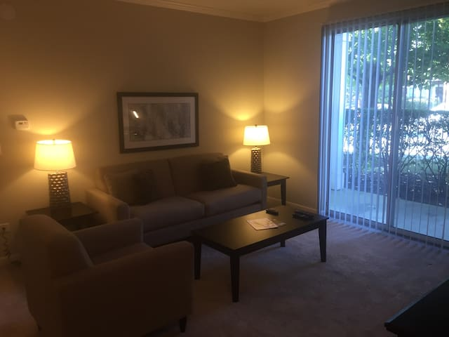Fantastic 1BR/1BA in Naperville - Naperville - Apartment