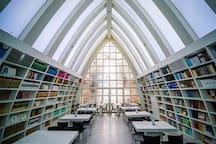 这是上海最美书店【钟书阁】,就在泰晤士里,泰晤士到处是唯美的风景,随手一拍你就是大片摄影师