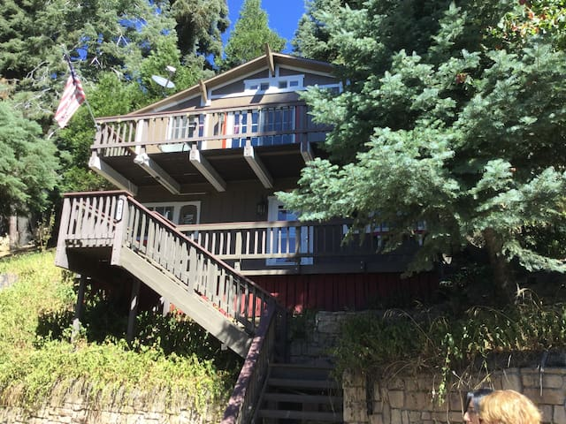 Arrowhead Castle - Lake Arrowhead - House