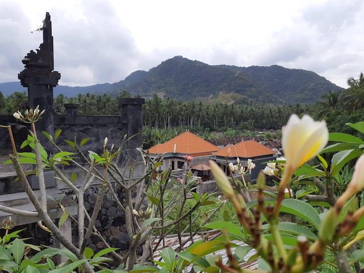 MUDI goes to the mountain....you too? (MUDI house)