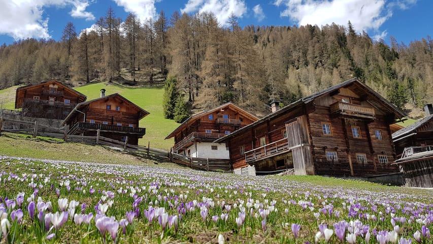Alpine Chalet in Tyrol, Austria