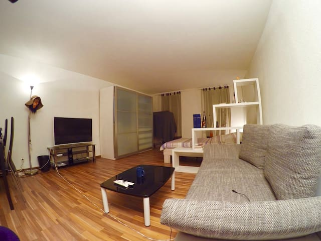 A massive studio in the heart of Lausanne - Lausanne - Appartement