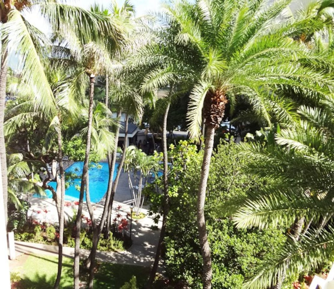 View of the pool from the dining nook.