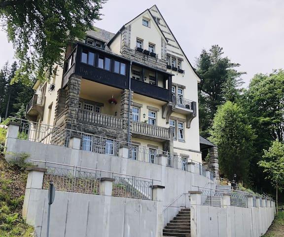 Haus Zedtwitz Appartement Nr. 3