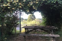 outside eating area under pergola