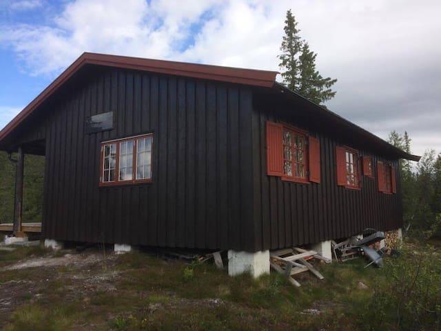 Votnedalen, Vegglifjell