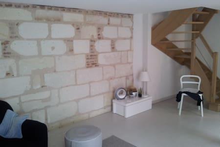 Chambre en plein centre de Tours 39 rue palissy - Tours