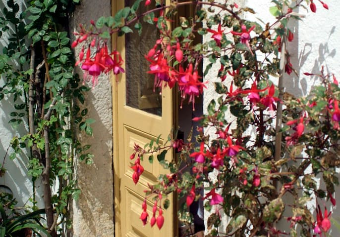 Artist Cottage in Sintra